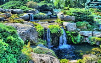 Small Waterfall Bushes Rocks wallpapers and stock photos