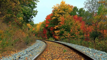 Autumn Forest & Train Tracks wallpapers and stock photos