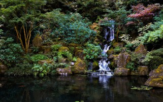 Plants Waterfall Rocks Lake wallpapers and stock photos