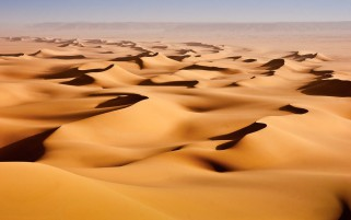 Golden Sand Dunes wallpapers and stock photos
