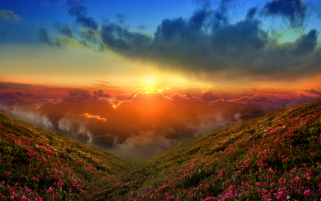 Red Clouds Flowers Hill Sunset wallpapers and stock photos