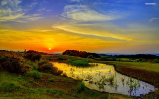 Swamp Nature Golden Sunrise wallpapers and stock photos