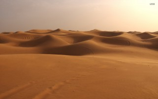 Golden Hilly Desert Dunes wallpapers and stock photos