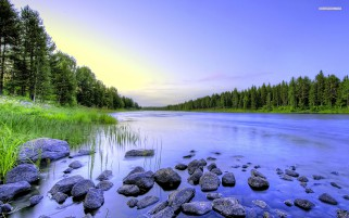 Calm River Forest Grass Stones wallpapers and stock photos