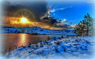 Bright Sun Árboles Snowy River wallpapers and stock photos