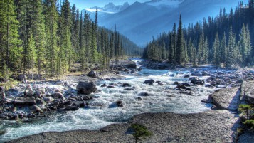 Mistaya River Alberta Banff wallpapers and stock photos