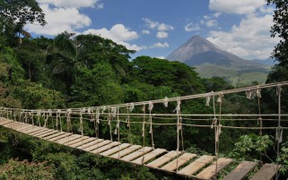 Next: Rope Bridge Costa Rica