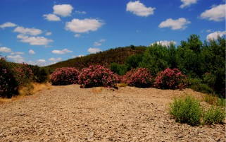 Alentejo Portugal Two wallpapers and stock photos