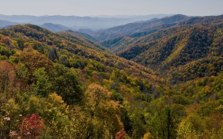 Great Smoky Mountains Usa wallpapers and stock photos