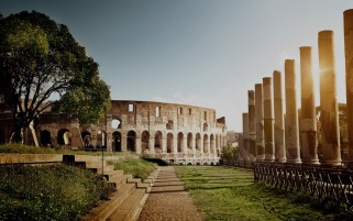 Previous: Colosseum Rome Italy Two