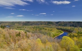 Spring Forest Sigulda Latvia wallpapers and stock photos
