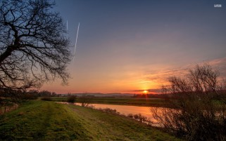 Bare Trees Grass River Sunset wallpapers and stock photos