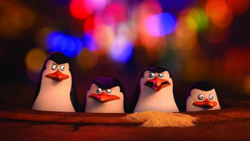 Die Pinguine aus Madagascar wallpapers and stock photos