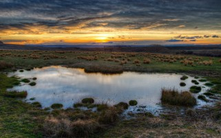 Field Gras Swamp Clouds Sunset wallpapers and stock photos
