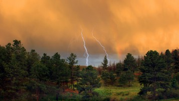 Orange Sky Forest ThunderStorm wallpapers and stock photos