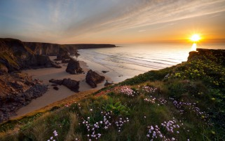 Ocean Coast Cliffs Flowers Sun wallpapers and stock photos