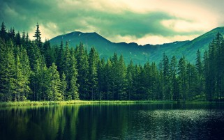 Mountain Green Forest Deep Sea wallpapers and stock photos