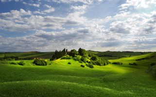 Random: Green Hill Trees Cloud Tuscany