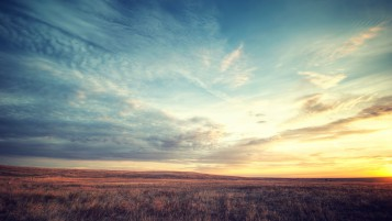 Field Grass Sunset Clouds Sky wallpapers and stock photos