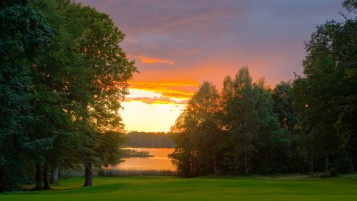Lovely Trees Grass Lake Sunset wallpapers and stock photos