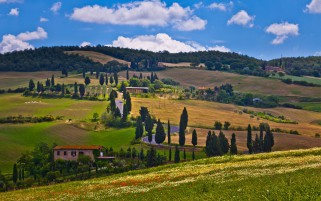 Hills Trees Houses Road Italy wallpapers and stock photos