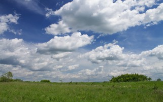 Green Field Bushes Clouds Sky wallpapers and stock photos