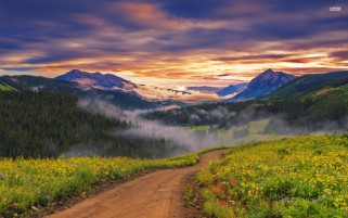 Previous: Amazing Valley Path Sunset Fog
