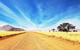 Wide Road Golden Savannah wallpapers and stock photos