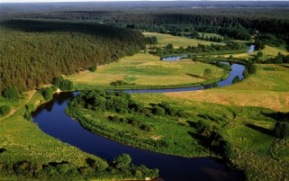 Forest River Meadow Lithuania wallpapers and stock photos