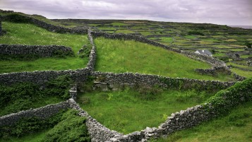 Beautiful Stone Fences Ireland wallpapers and stock photos
