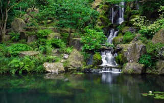 Waterfall Plants Rocks Sea wallpapers and stock photos