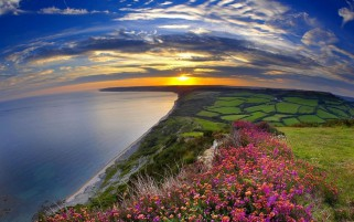 Lovely Vale Ocean Flowers Sun wallpapers and stock photos