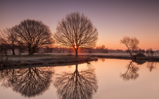 Bare Trees Lake Frosty Field wallpapers and stock photos