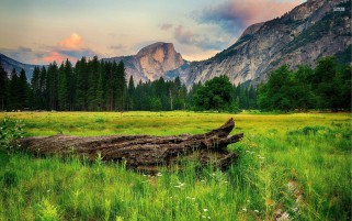 Pretty Half Dome Yosemite wallpapers and stock photos