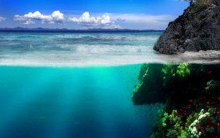 Under Water Rock Vegetation wallpapers and stock photos
