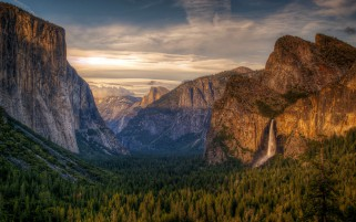 Beautiful Trees Rocks Yosemite wallpapers and stock photos
