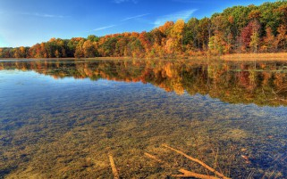 Autumn Trees Clear Lake Wood wallpapers and stock photos