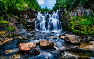 Rushing Waterfall Rocks Plants wallpapers and stock photos