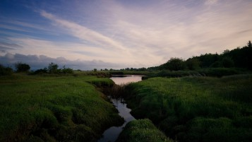 Dark Green Grass River Trees wallpapers and stock photos