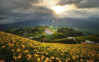 Hills Yellow Flowers Houses wallpapers and stock photos