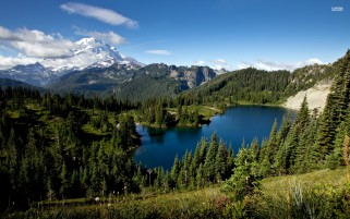 Random: Mount Rainier Washington Usa