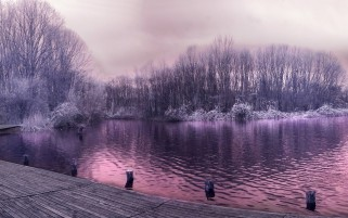 Random: Pretty Purple Lake Trees Jetty