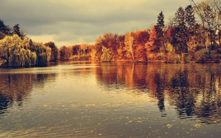 Orange Trees Lake Foliage Sky wallpapers and stock photos