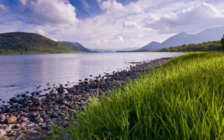 Lovely River Fresh Grass Stone wallpapers and stock photos
