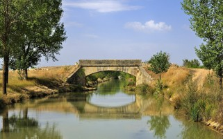 River Bridge Trees Hill Side wallpapers and stock photos