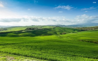 Beautiful Grass Green Hills wallpapers and stock photos