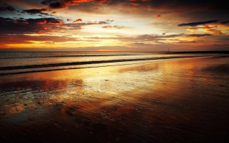 Pretty Beach Ocean Golden Sky wallpapers and stock photos
