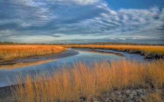 Blue Stream Golden Grass Sky wallpapers and stock photos