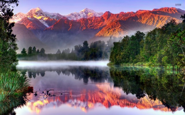 Red Peaks Lake Trees Foggy wallpapers and stock photos