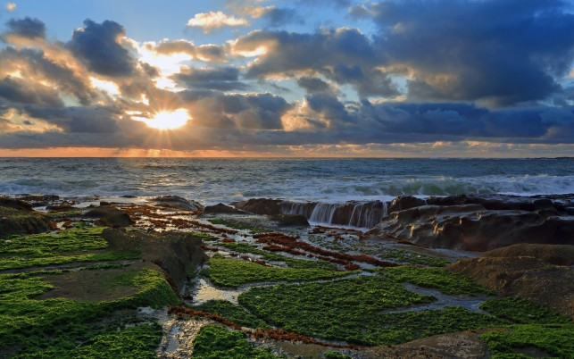 Pacific Ocean Rock Moss Sunset wallpapers and stock photos